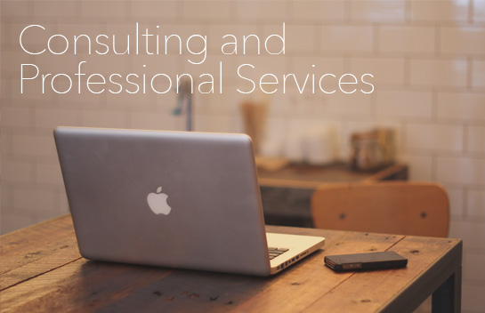 Consulting and Professional Services